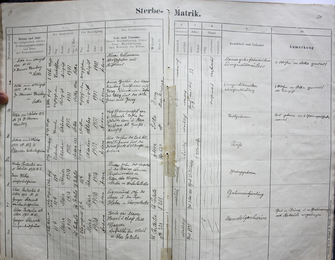 Bucovina vital records database solca death records 1902 1903 note that column headings as well as entries are in german and each record spans both pages yadclub Gallery