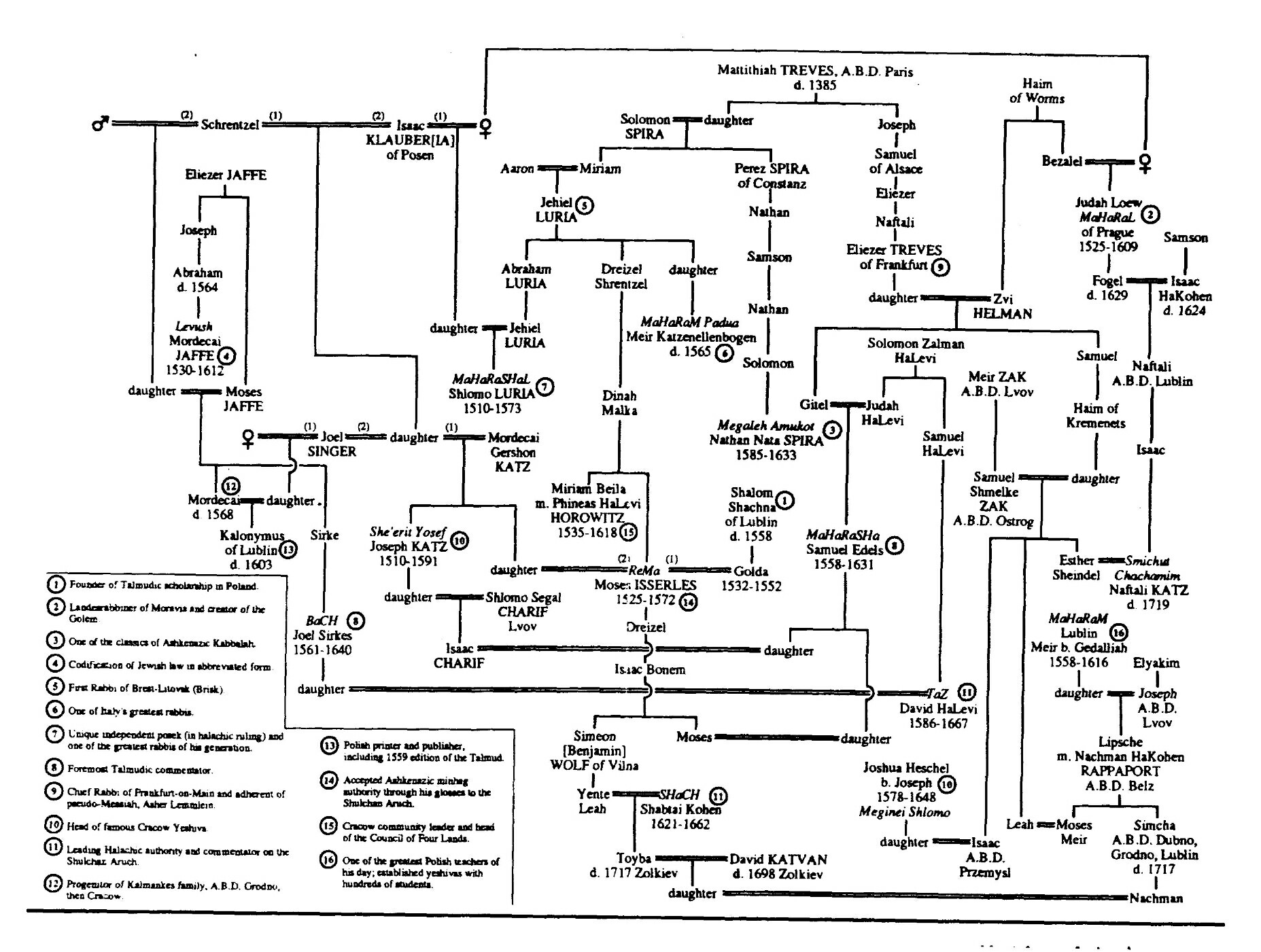 family lineage chart