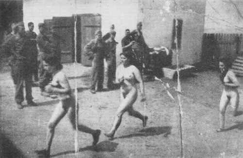 prostitutas campos concentración dibujos a lapiz de prostitutas